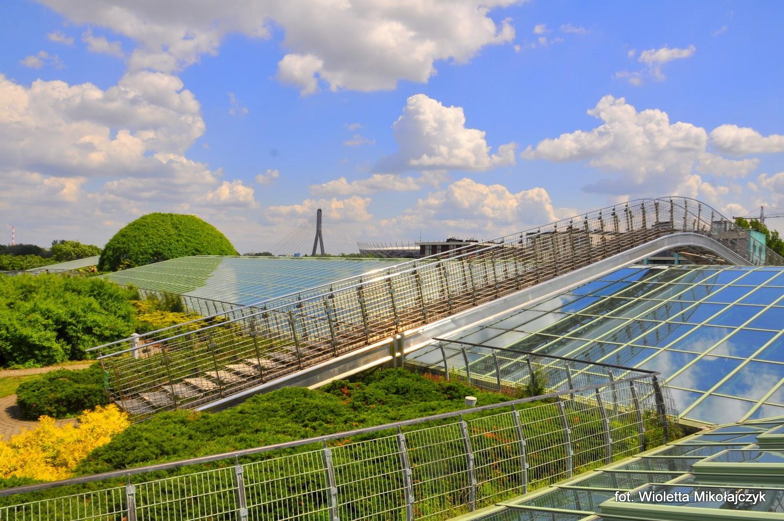 Ogród dachowy biblioteki UW- zielone miejsce z widokiem na stolicę.