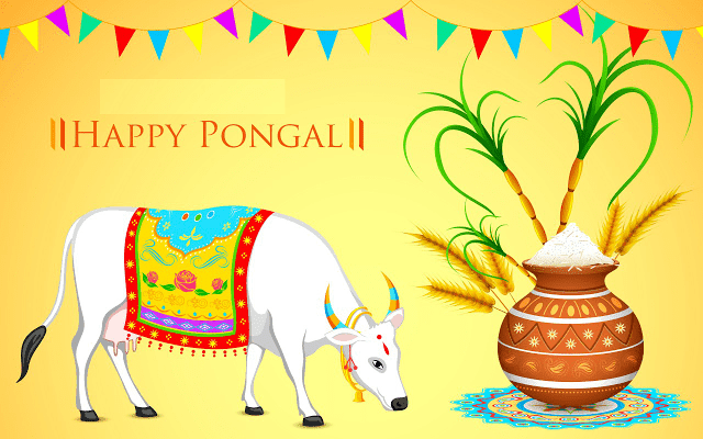 Happy Pongal Images Wallpapers Pictures 2017
