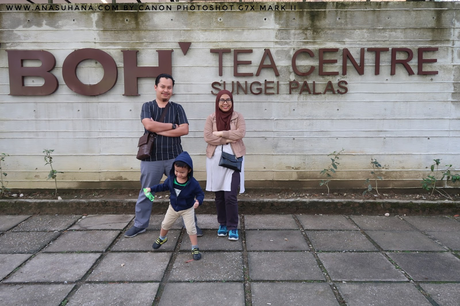 Tempat Menarik di Cameron Highlands : Cameron Valley Bharat Tea Plantation dan Boh Tea Centre Sungai Palas