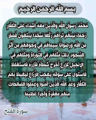 محمد رسول الله والذين معه اشداء على الكفار رحماء بينهم ، سورة الفتح