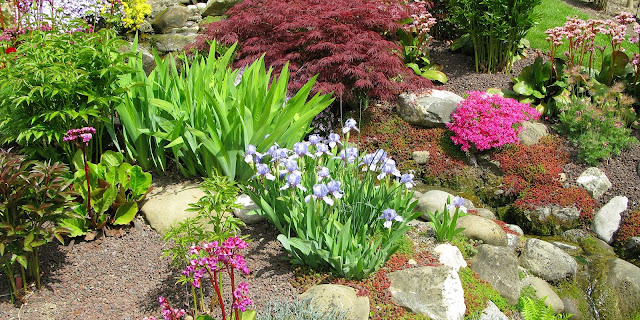 landscaping rock garden ideas