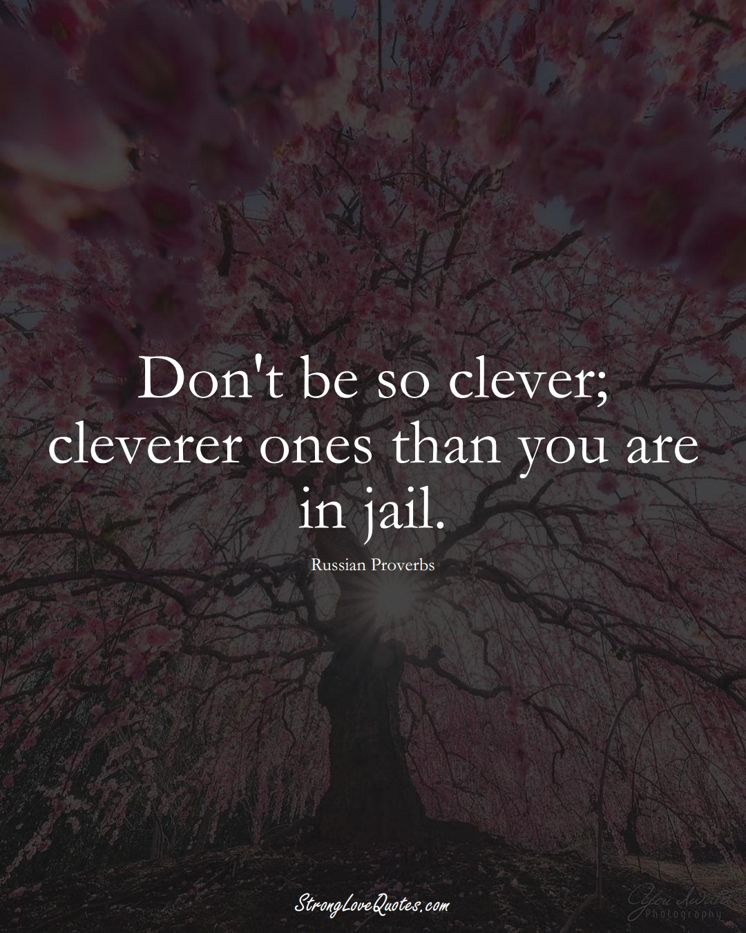Don't be so clever; cleverer ones than you are in jail. (Russian Sayings);  #AsianSayings