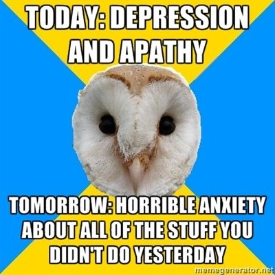 bipolar owl depression and anxiety meme