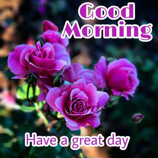 good morning ka picture dikhao