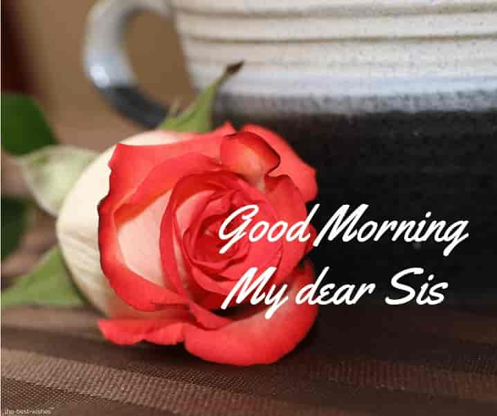 good morning dearest sister