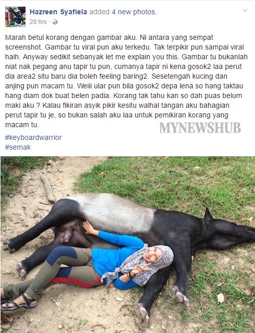 tapir2.png