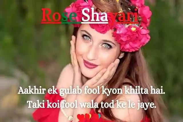 Best Rose Day Shayari | Rose Shayari In Hindi | Rose Shayari In English.