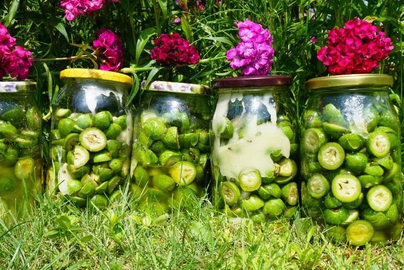 syrop z zielonych orzechów mnóstwo jodu z miodem