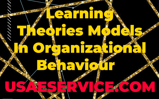 Learning Theories Models In OB