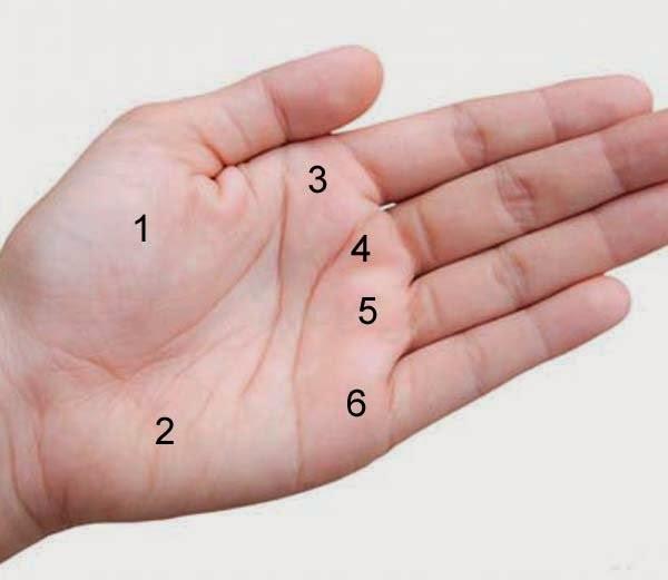 क्या होता है हथेली में तिल का मतलब ?-What does mole mean in the palm?