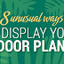 8 Unusual Ways to Display your Indoor Plants #infographic