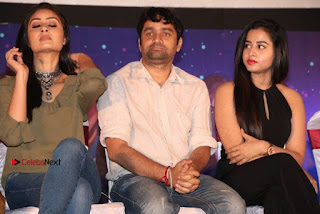 Simba Movie Audio Launch Stills  0074.jpg