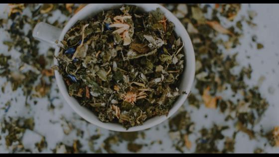Obat Kimia Atau Obat Herbal, Mana Yang Lebih Baik?