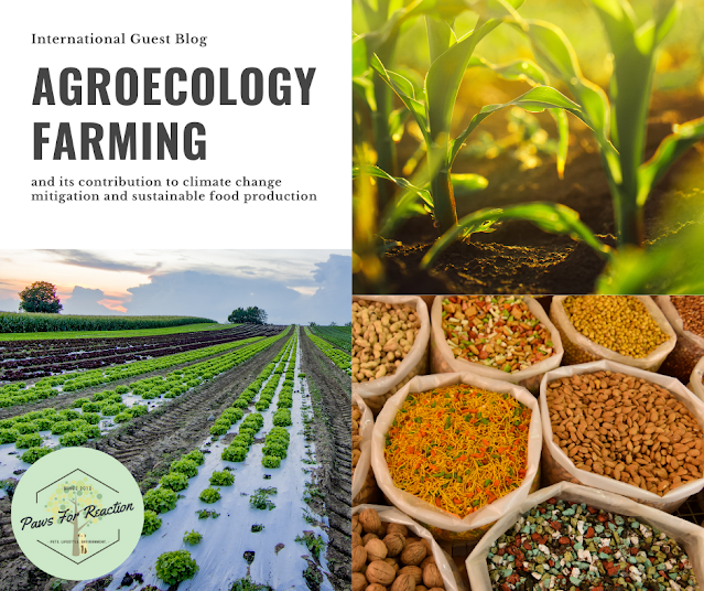 Agroecology farming and its contribution to climate change mitigation and sustainable food production