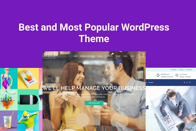 9 Best and Most Popular WordPress Theme 2020
