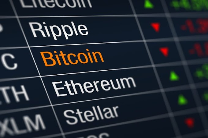 A Look at the Position of Bitcoin in the Crypto Market