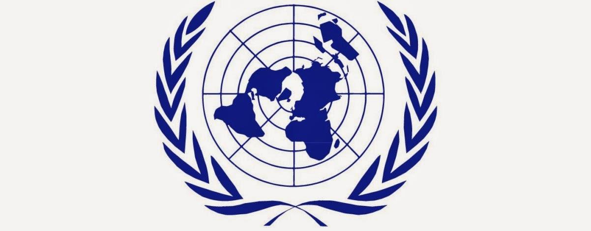 Personalidad juridica de las organizaciones internacionales