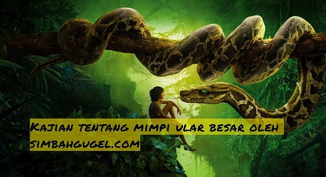 fakta tentang arti mimpi ular besar