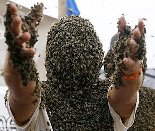 manusia lebah
