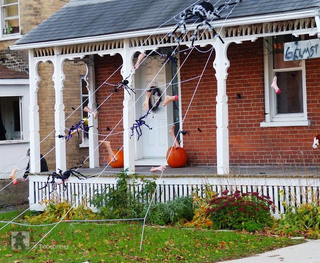 Hier hat jemand ein riesiges Spinnennetz vom Dach seines Hauses gezogen, in dem sich jede Menge der gruseligen Krabbeltiere mit Ihrer Beute   aus abgerissenen Extremitaeten tummeln....eek! :)