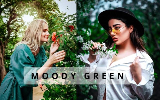Moody Green Lightroom Mobile Preset | Lightroom Preset