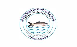 www.punjabfisheries.gov.pk Jobs 2021 - Fisheries Department Punjab Jobs 2021 in Pakistan