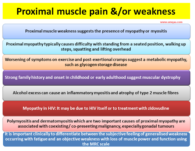What are the causes of proximal muscle pain or weakness?