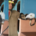 Bombeiros da Cidade de Goiás capturam cobra no interior de uma residência