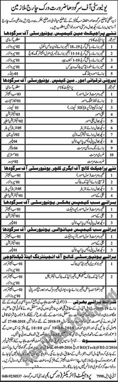 54 Jobs in University of Sargodha August 2018