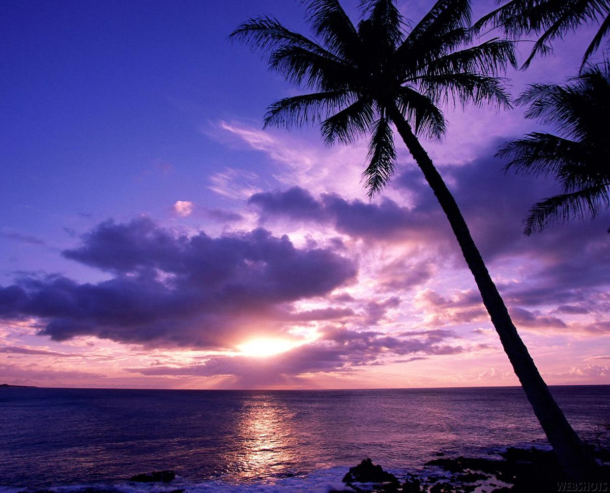 Funny wallpapers summer nights wallpapers night beach - Cool night nature backgrounds ...