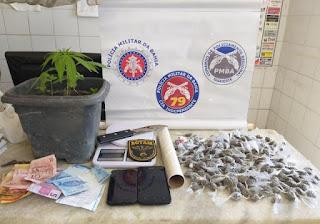 Tráfico de drogas, em Poções