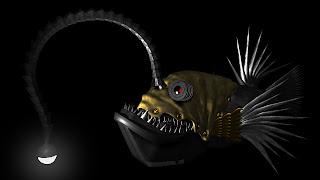 3D piranha fish hq wallpapers