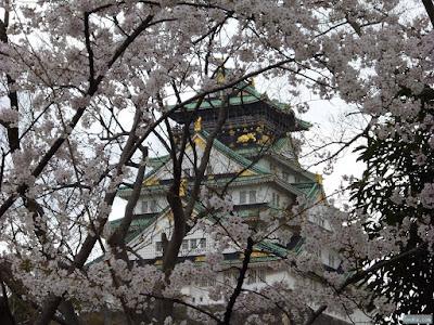 桜と大阪城