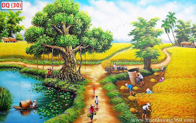 Tranh đồng quê vẽ cảnh đồng lúa chín