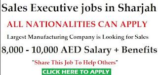 Sales Executive in Transportation Company Dubai