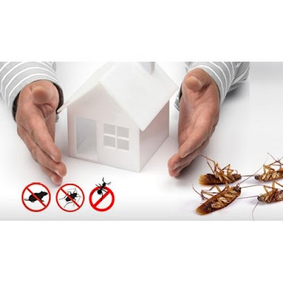 CLEANSCO   Shrikant Raut  Email: cleansco@gmail.com Mobile: +919819688788
