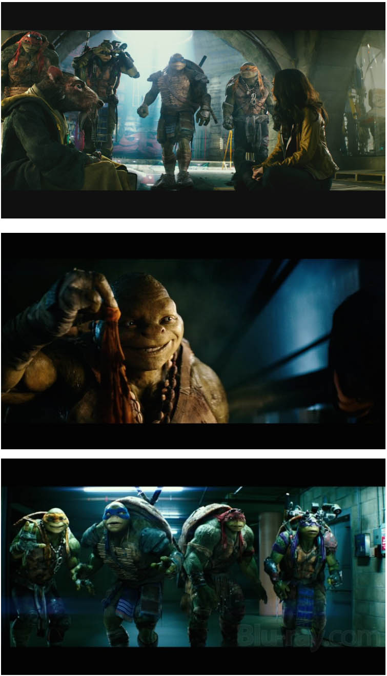 teenage mutant ninja turtles 2014 123movies