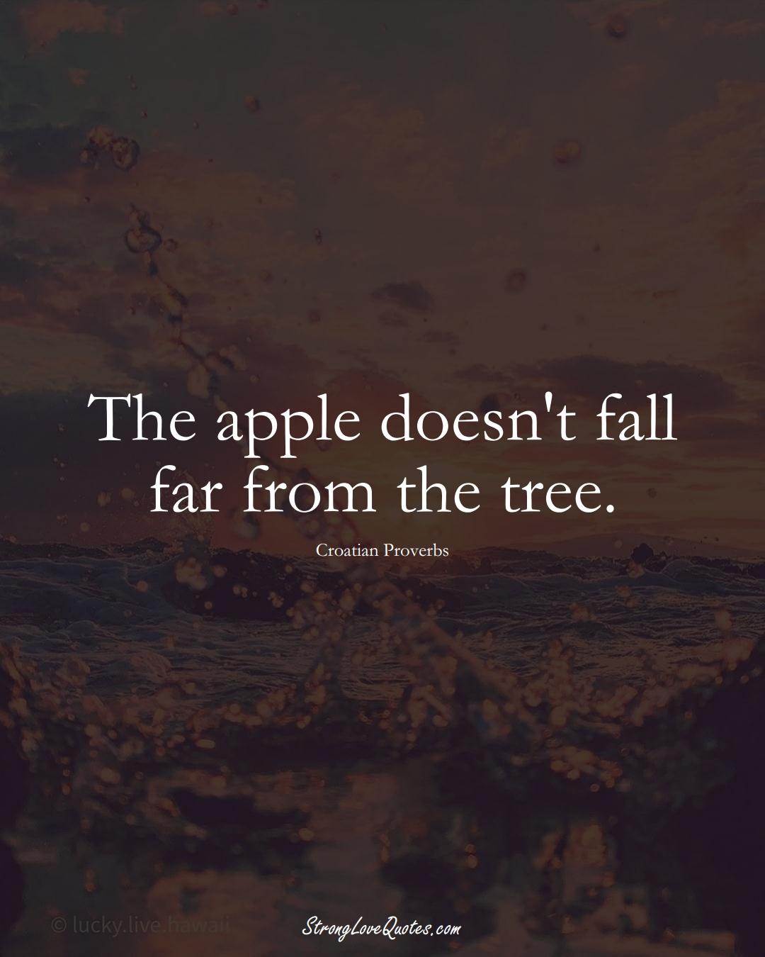 The apple doesn't fall far from the tree. (Croatian Sayings);  #EuropeanSayings