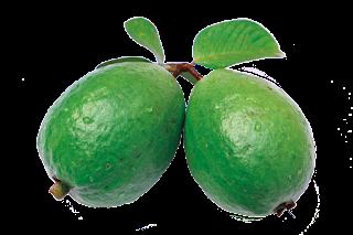 Guava Benifits in Bengali