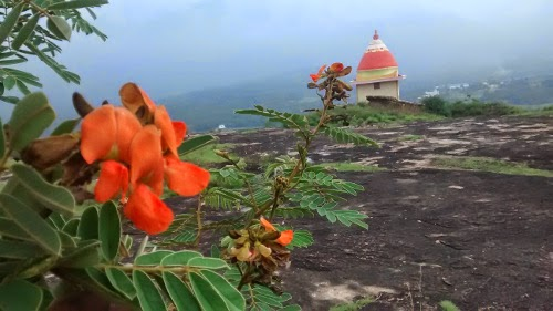 Temple on Anakottaparai park hill top munnar