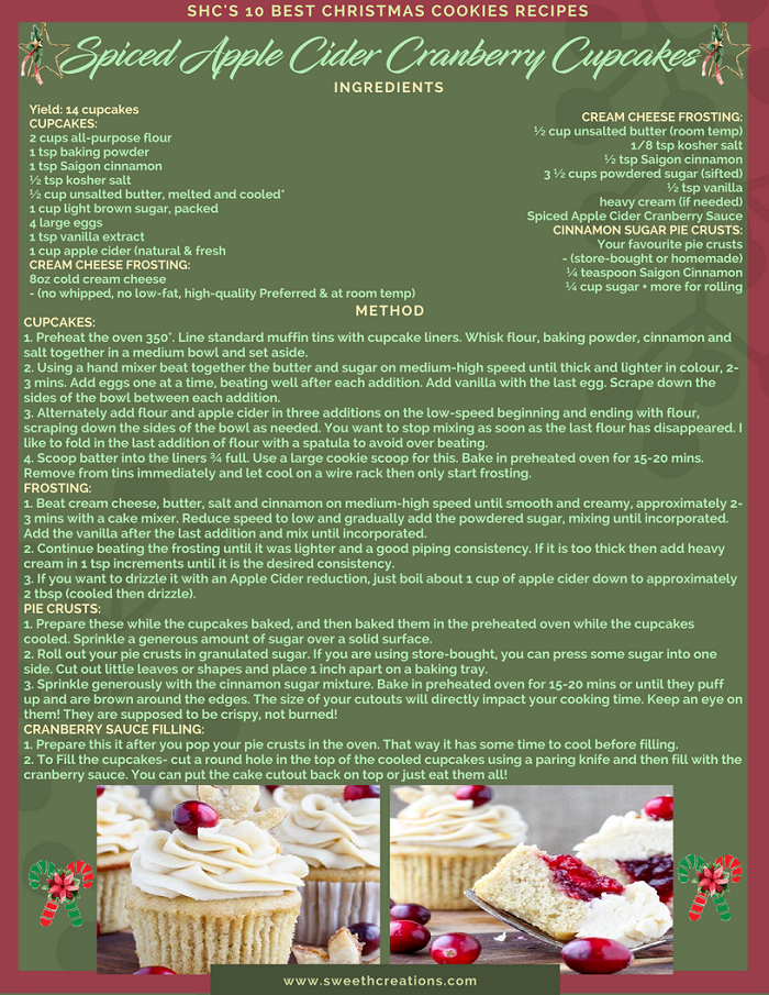SPICED APPLE CIDER CRANBERRY CUPCAKES RECIPE