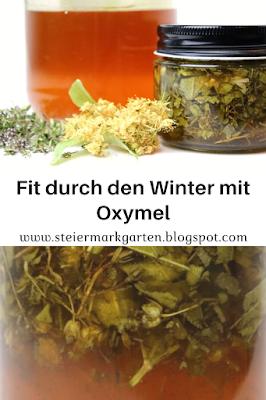 Pin-fit-durch-den-Winter-mit-Oxymel-Steiermarkgarten