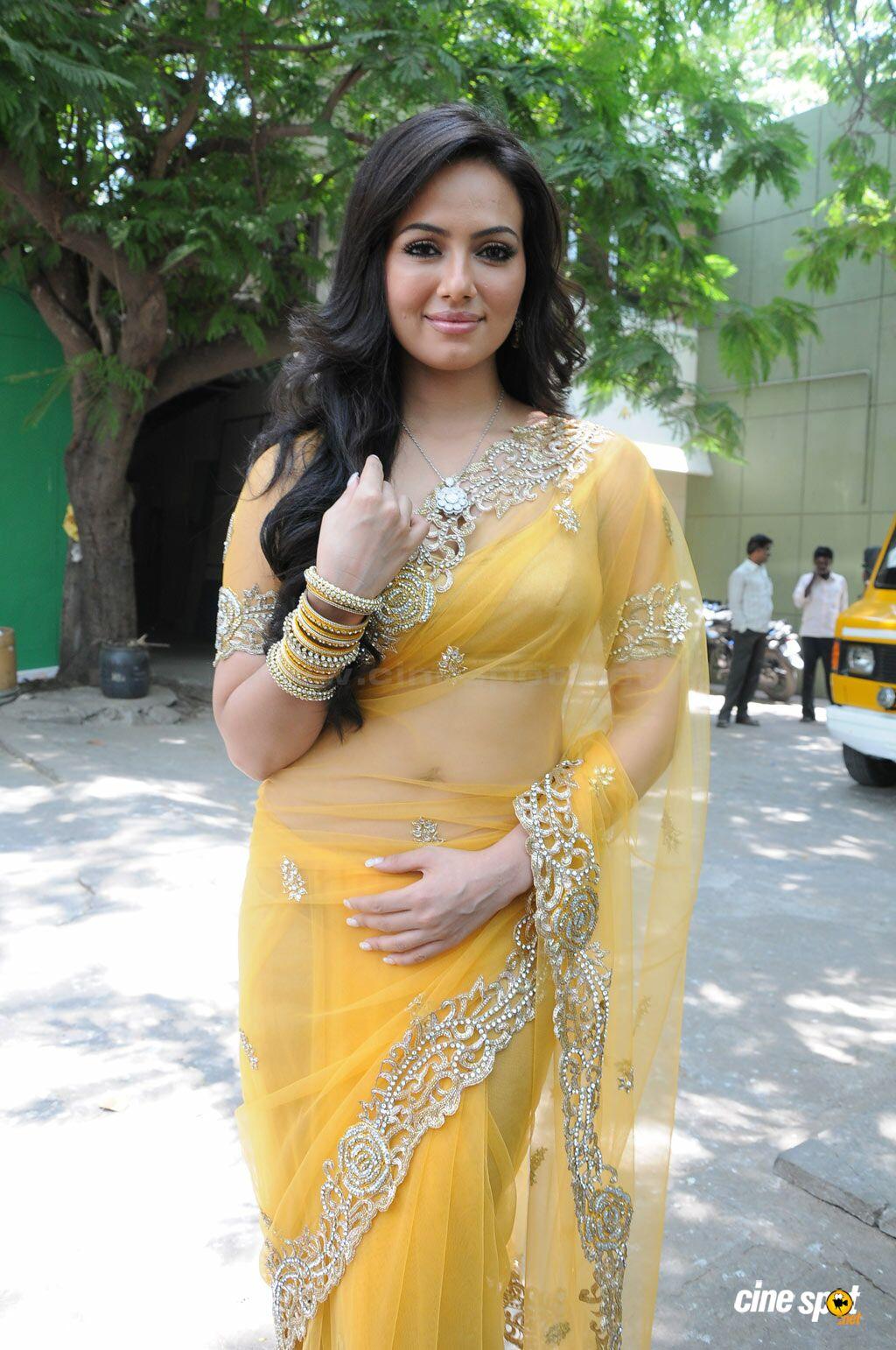 transparent saree cleavage
