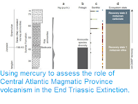 https://sciencythoughts.blogspot.com/2016/04/using-mercury-to-assess-role-of-central.html