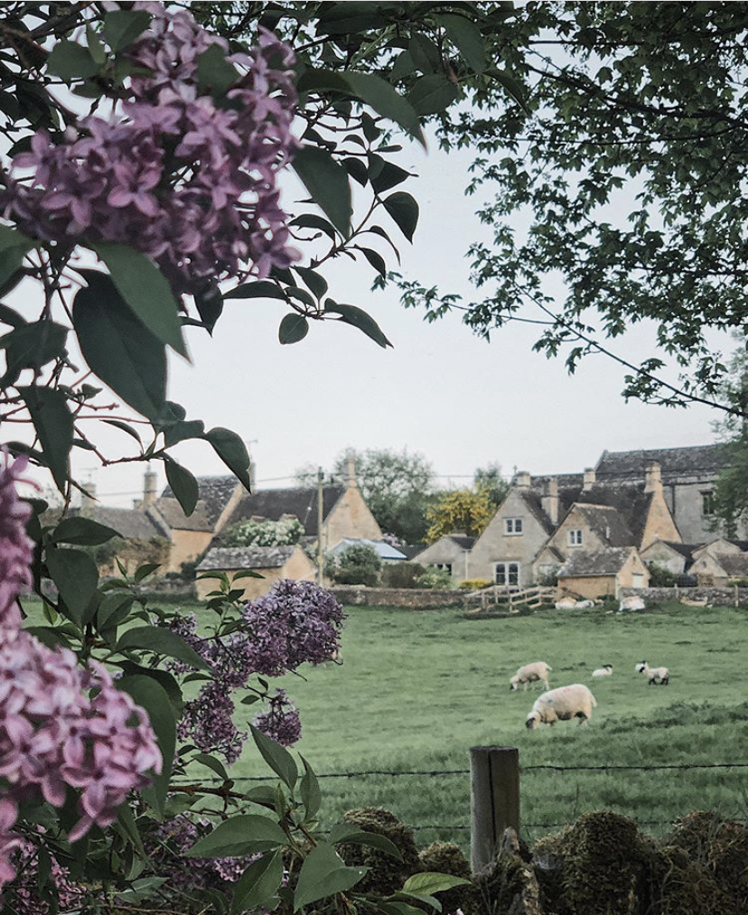 From Instagram | English Country Life with @irenemylife