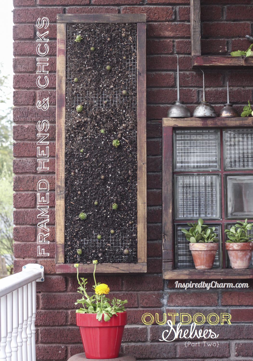 Wall Garden Hens and Chicks