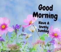 good morning happy sunday hd images