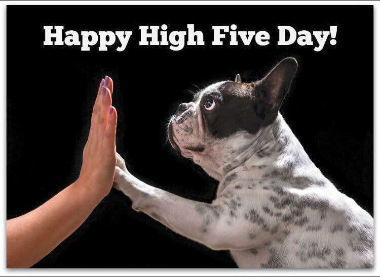 National High Five Day Wishes pics free download