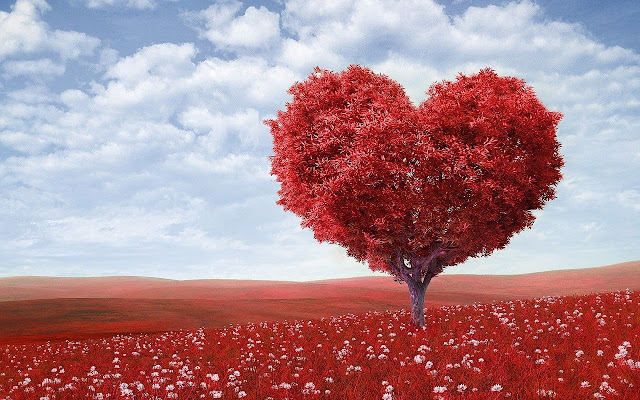Red-trees-Love-image