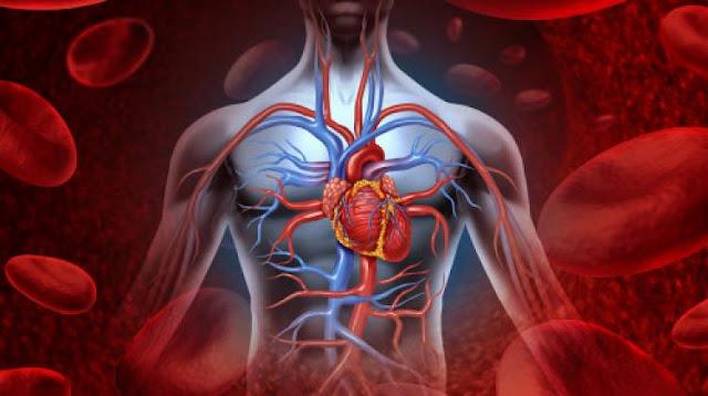 Visok hemoglobin - zašto je opasan i koji su simptomi